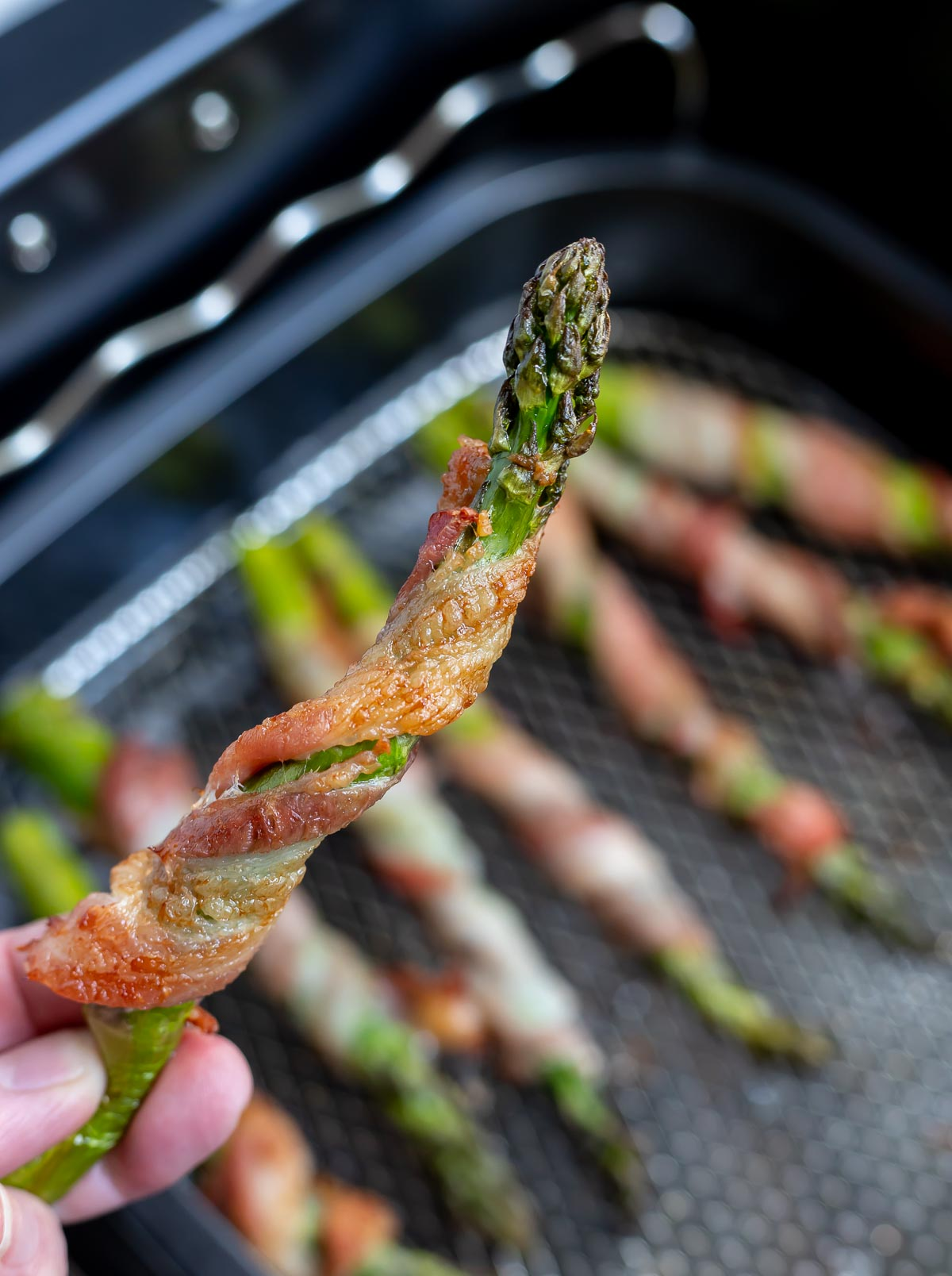 hand holding cooked bacon wrapped asparagus spear
